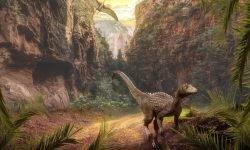 Drømmetydning Dinosaur: Drømmesymboler, Drømmer
