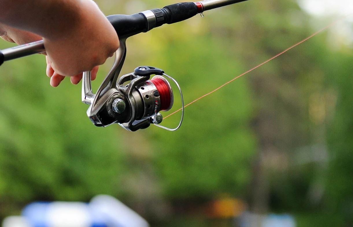 Drømmetydning fiske