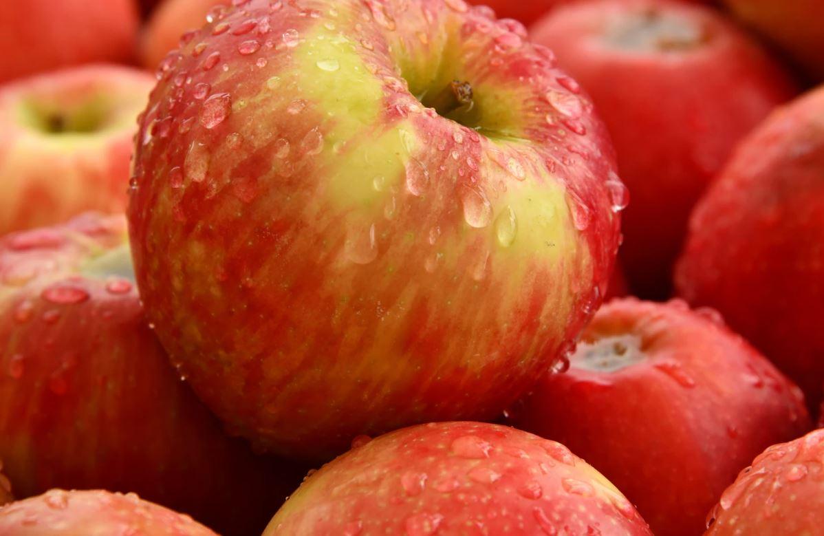 Drømmetydning eple