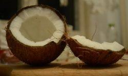 Er kokosnøtt sunt? 22 gode grunner