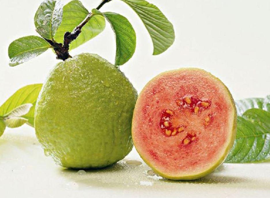 guava sunt