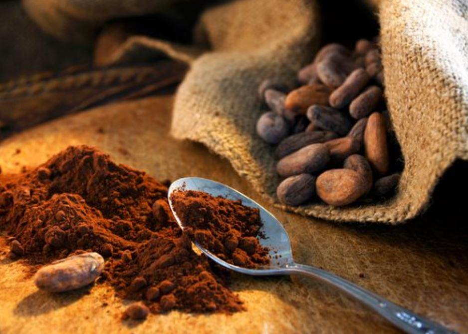 kakao sunt