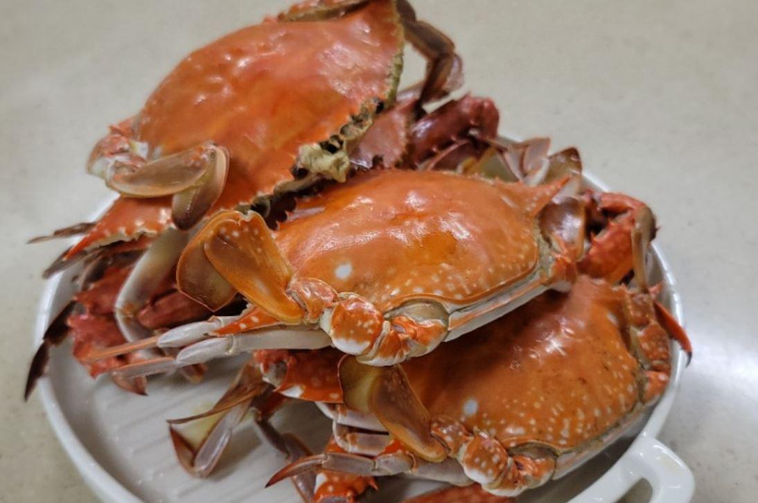Er krabbe sunt