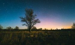 Stjernetegn 6 januar - Hva er min personlighet?
